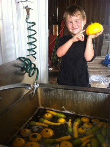 Washing summer squash and having fun!