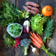 fall boxes welcome the return of greens and features crops like sweet potatoes and pie pumpkins for the first time